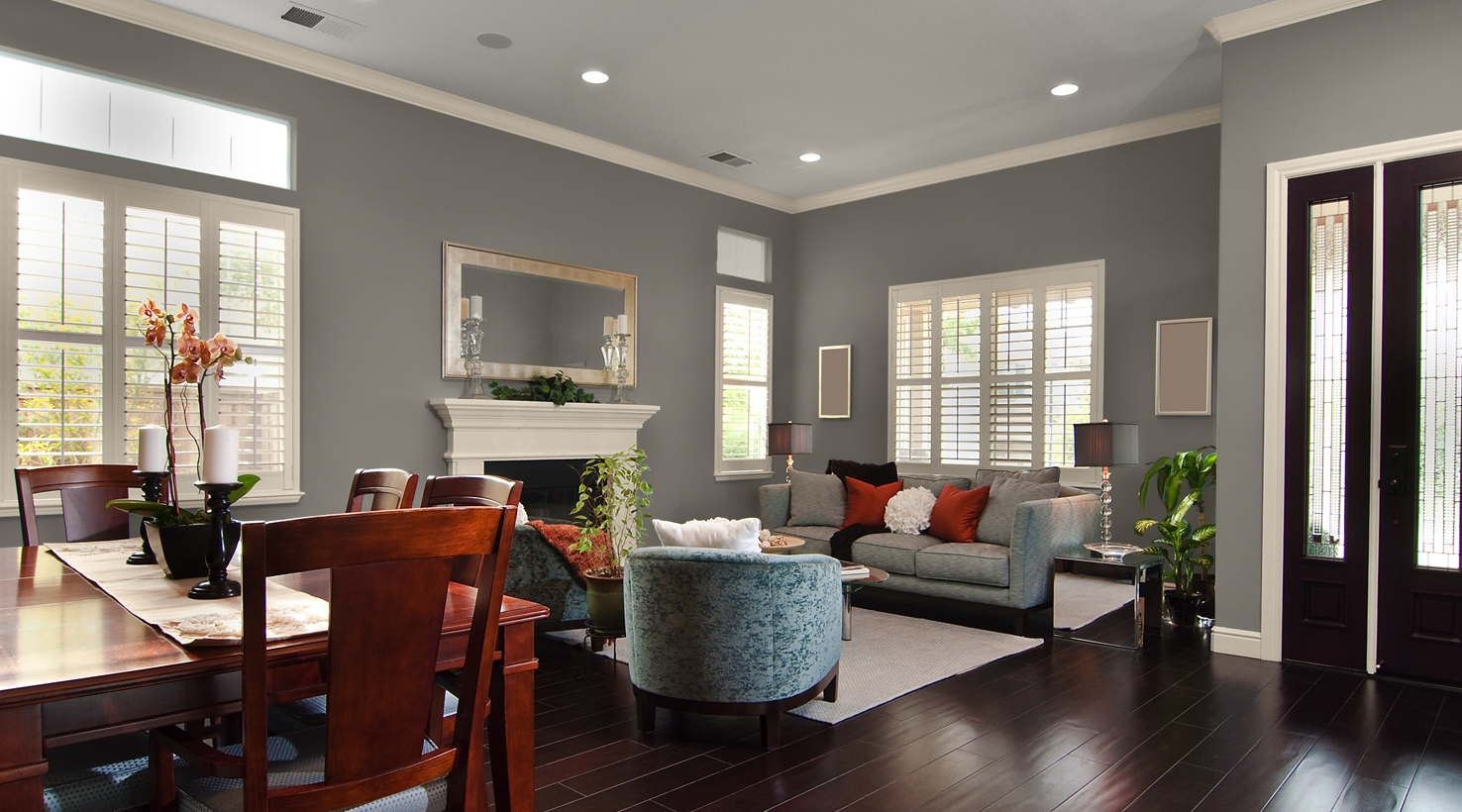 Sherwin Williams Functional Gray Living Room Opnodes