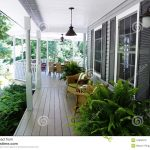 outdoor living stock photo image of ferns colours covered 34658216