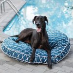 replacement cover snoozer pool patio round dog bed indoor